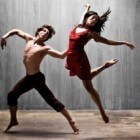 Dansopleidingen in Nederland