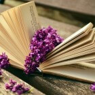Examens: open boek examen