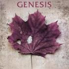 Boekverslag: Karin Slaughter 'Genesis'