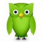 Gratis een taal leren met Duolingo