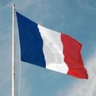 Frans grammatica: het lidwoord