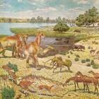 Opkomst van zoogdieren – Neogeen en Paleogeen