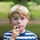 Kinderen met dyslexie in het reguliere onderwijs