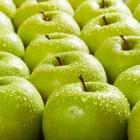 Spreekwoorden over appels in de Nederlandse taal
