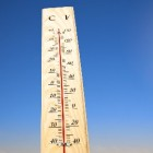 Invloed licht/temperatuur op snelheid fotosynthese